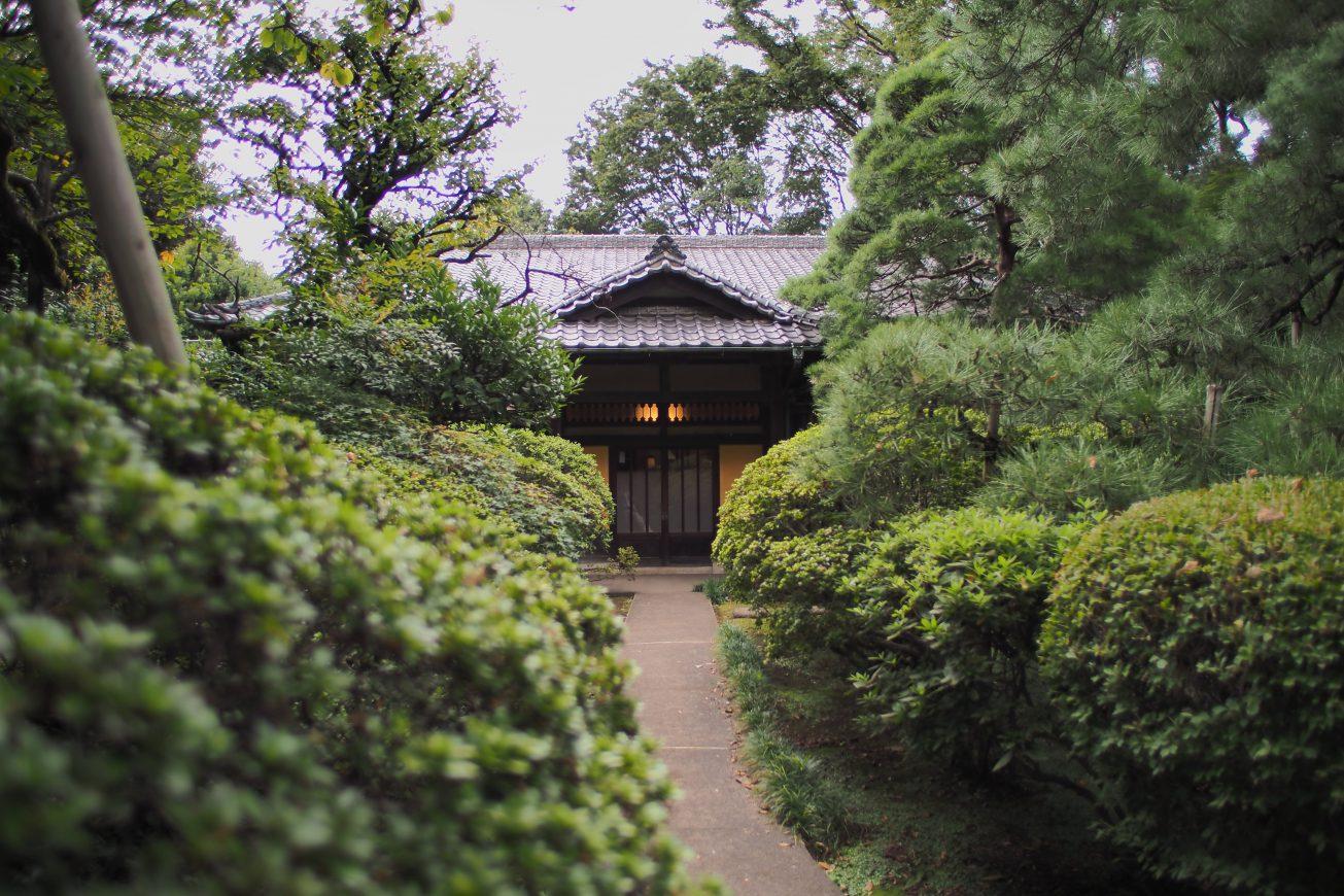 圧倒的な存在感を放つ正面玄関。周りの植物と相まって非常に雰囲気あるロケーションとなっております。